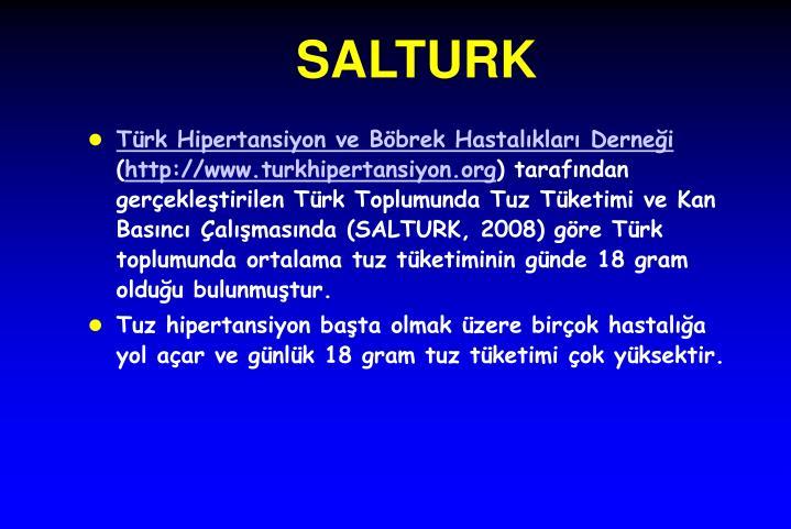 SALTURK