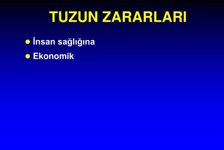 TUZUN ZARARLARI