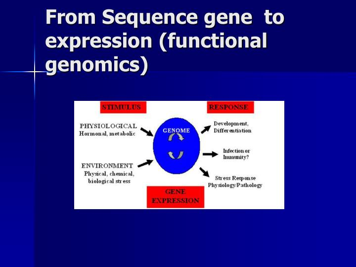 From Sequence gene  to expression (functional genomics)