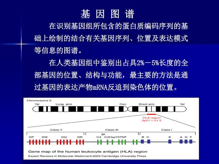 基 因 图 谱