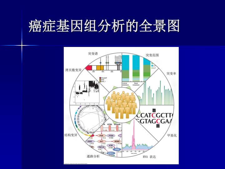 癌症基因组分析的全景图