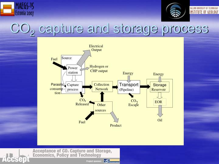 Co 2 capture and storage process