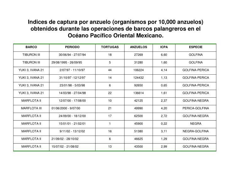 Indices de captura por anzuelo (organismos por 10,000 anzuelos) obtenidos durante las operaciones de barcos palangreros en el Océano Pacífico Oriental Mexicano.