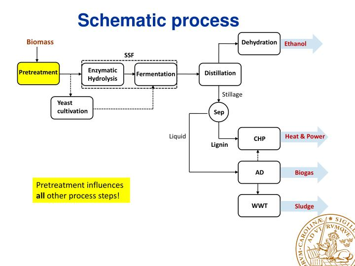 Schematic process