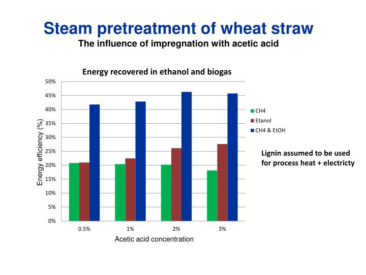 Steam pretreatment of wheat straw