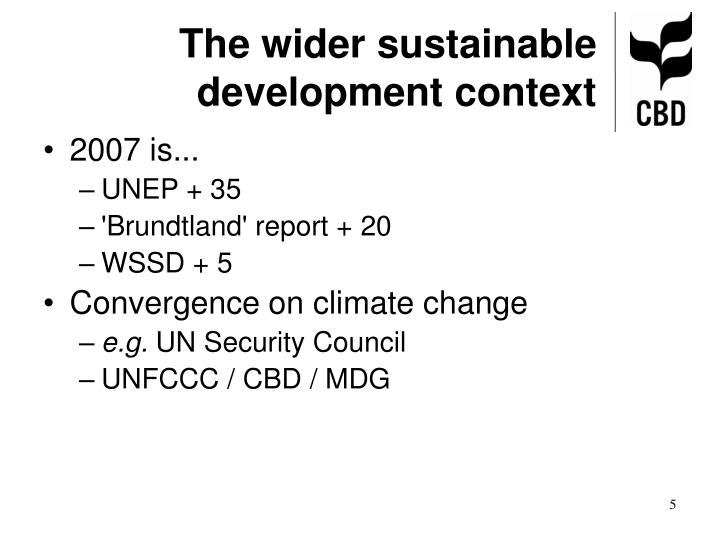 The wider sustainable development context