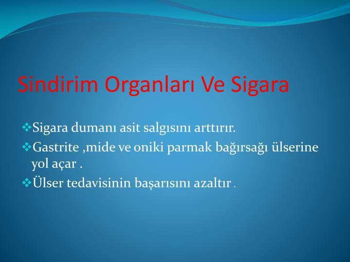 Sindirim Organları Ve Sigara