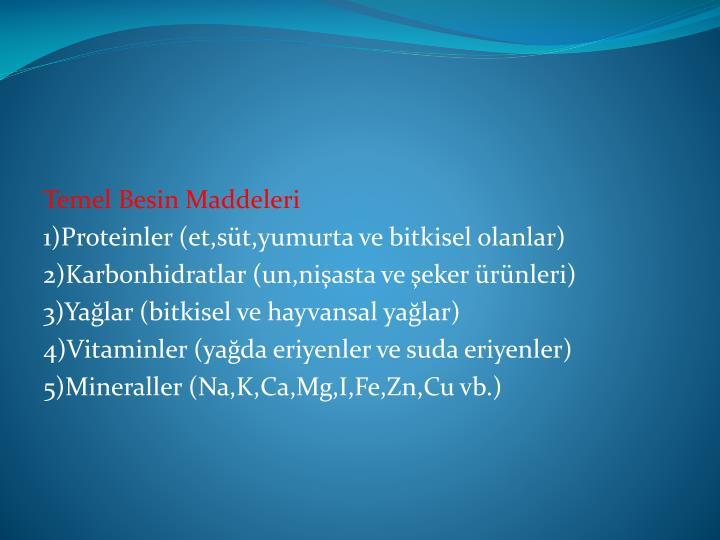 Temel Besin Maddeleri