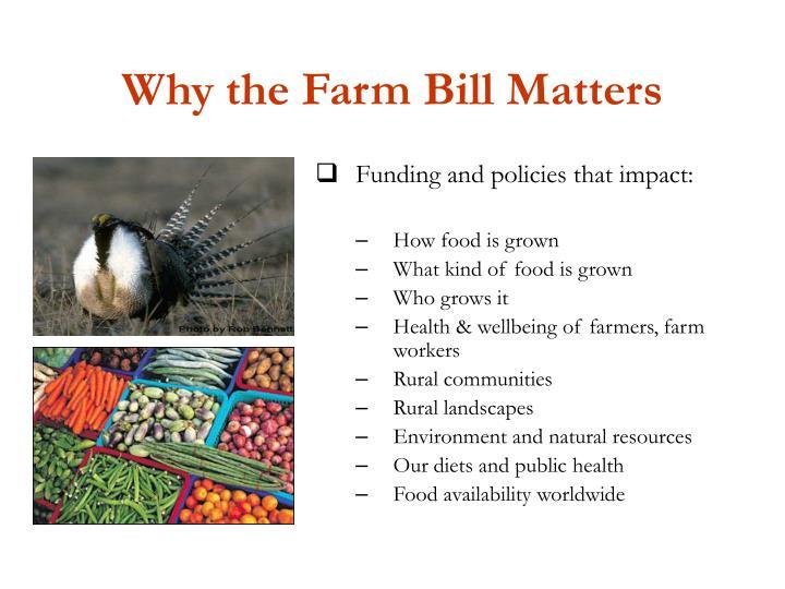 Why the Farm Bill Matters