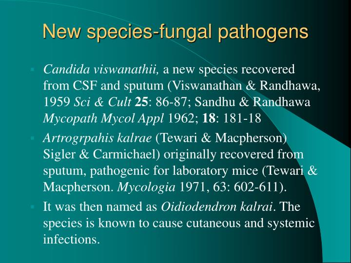 New species-fungal pathogens
