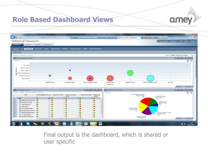 Role Based Dashboard Views