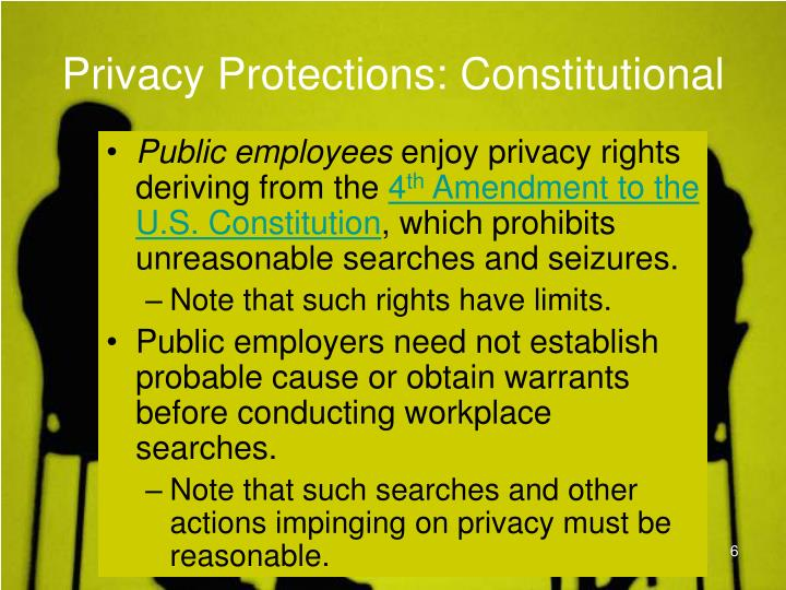Privacy Protections: Constitutional