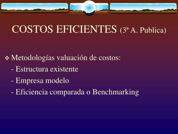 COSTOS EFICIENTES