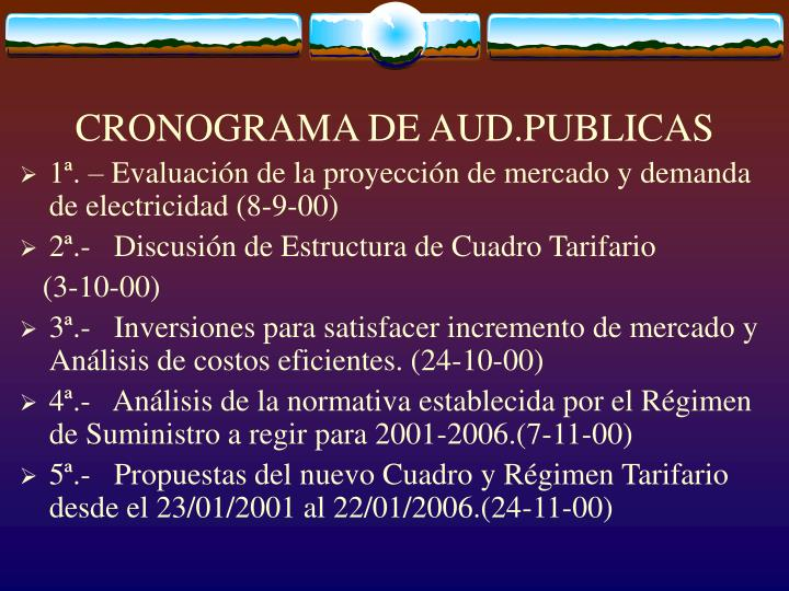 CRONOGRAMA DE AUD.PUBLICAS
