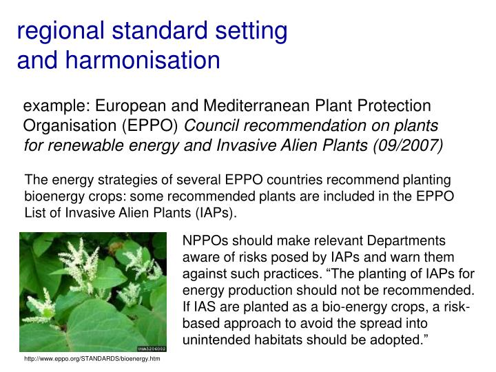 http://www.eppo.org/STANDARDS/bioenergy.htm