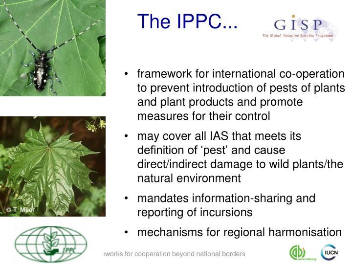 The IPPC...