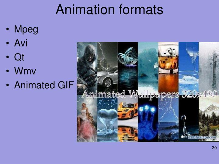 Animation formats