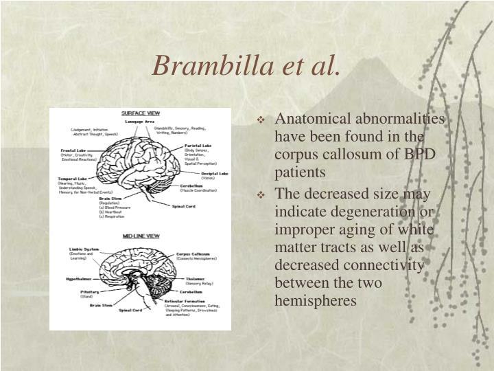Brambilla et al.