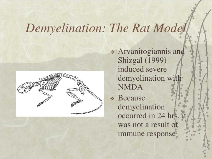 Demyelination: The Rat Model