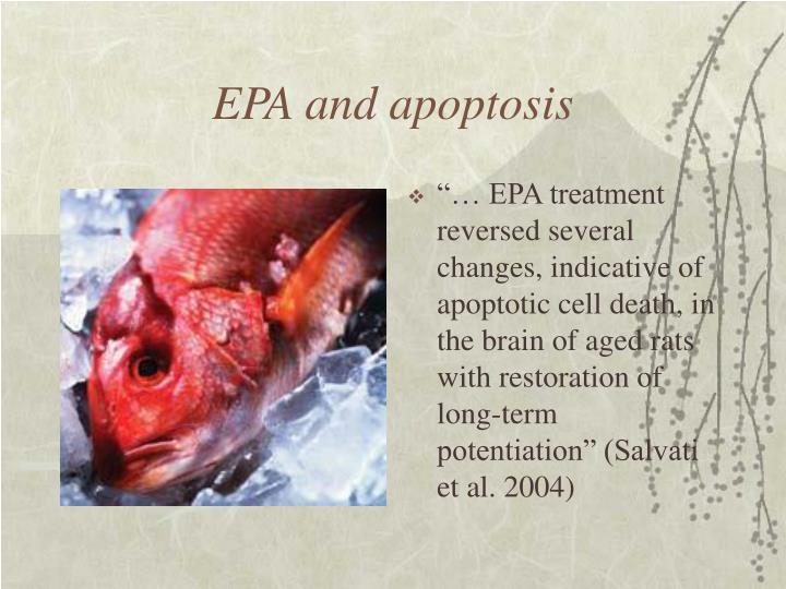 EPA and apoptosis