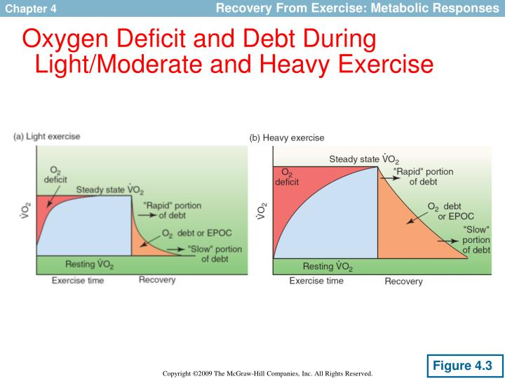 essay on oxygen debt and the This can be aerobic respiration, which needs oxygen, or anaerobic respiration, which does not during exercise, the breathing rate and heart rate increase during hard exercise an oxygen debt may build up.