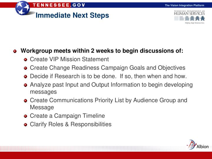 Immediate Next Steps