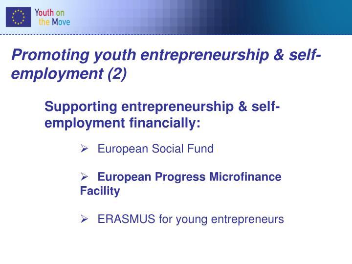 Promoting youth entrepreneurship & self-employment (2)
