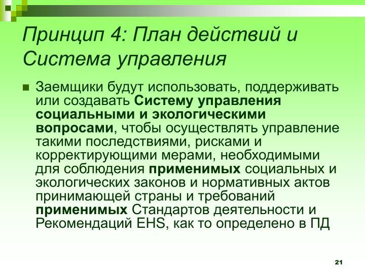 Принцип 4: План действий и Система управления
