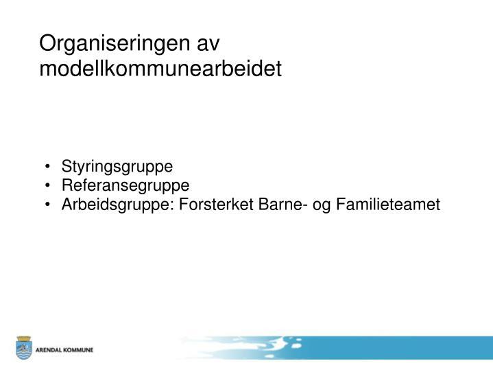 Organiseringen av modellkommunearbeidet