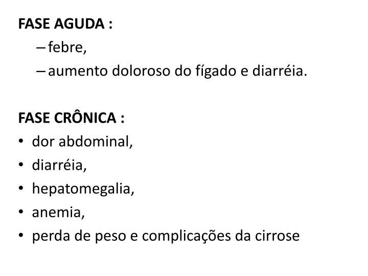 FASE AGUDA :