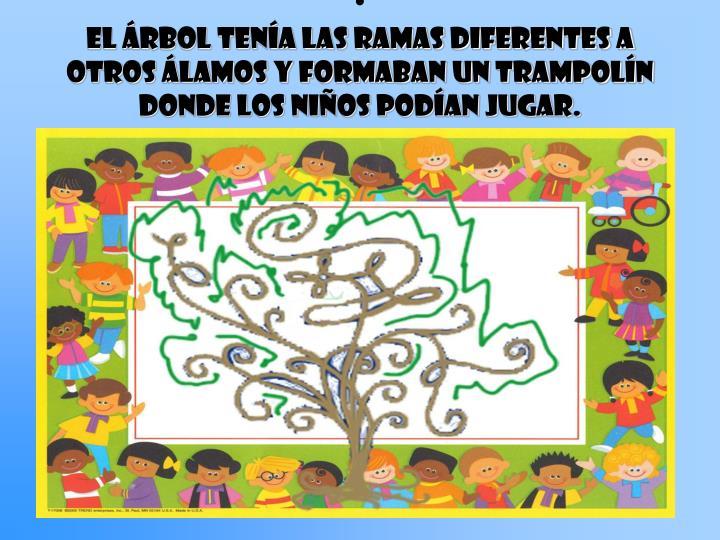 El rbol tena las ramas diferentes a otros lamos y formaban un trampoln donde los nios podan jugar.