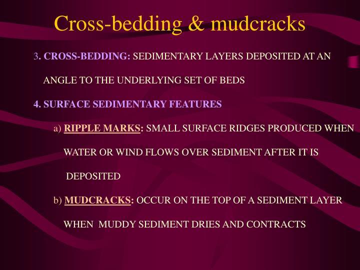 Cross-bedding & mudcracks
