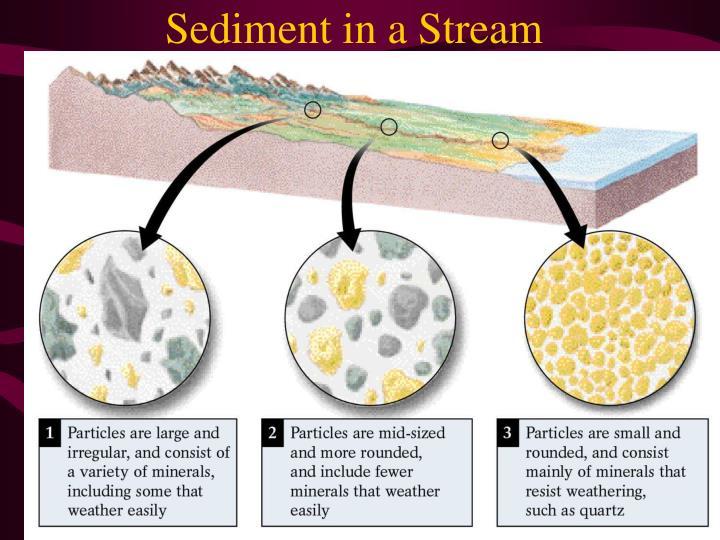 Sediment in a Stream
