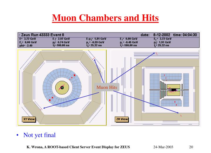 Muon Chambers and Hits