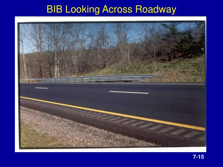 BIB Looking Across Roadway