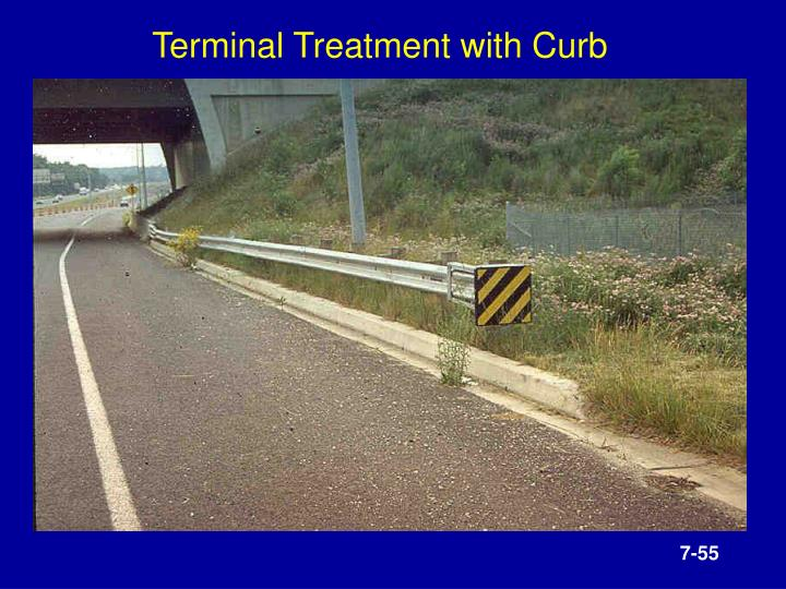 Terminal Treatment with Curb