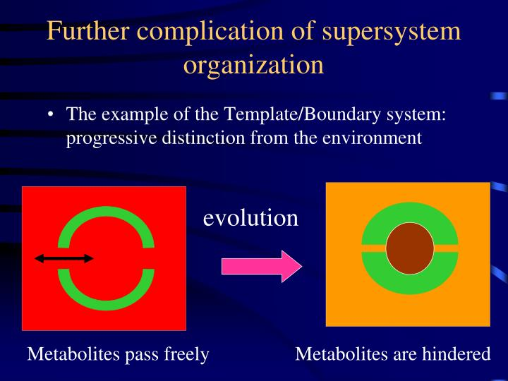 Further complication of supersystem organization