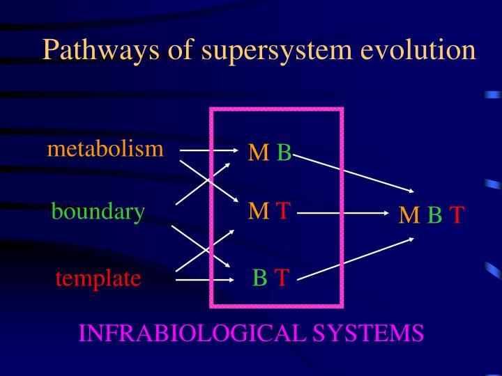 Pathways of supersystem evolution