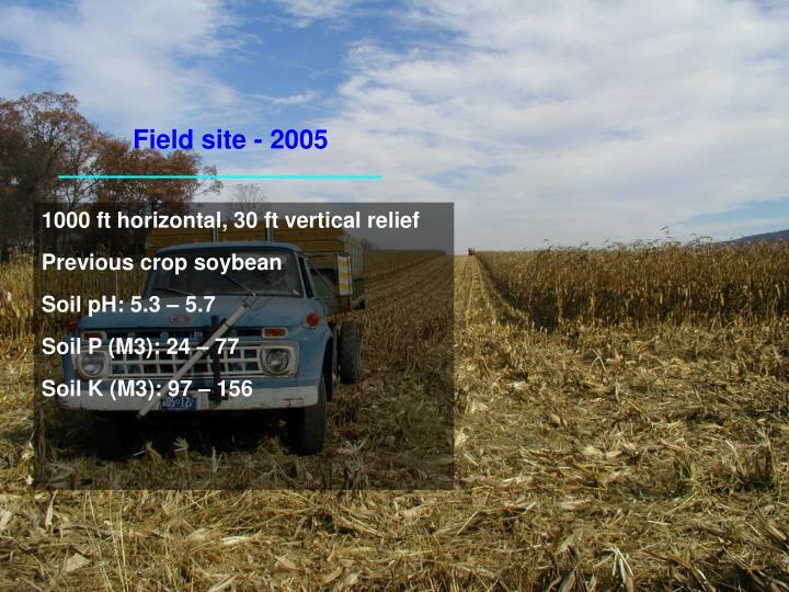 Field site - 2005