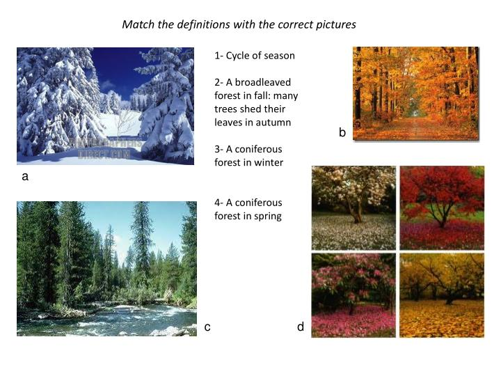 Match the definitions with the correct pictures