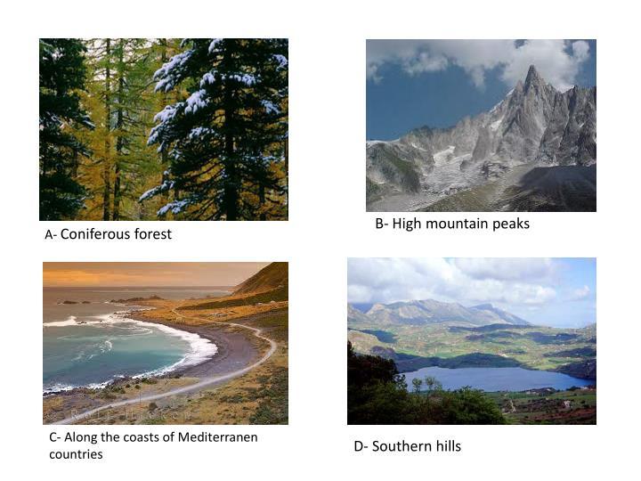 B- High mountain