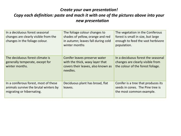 Create your own presentation!