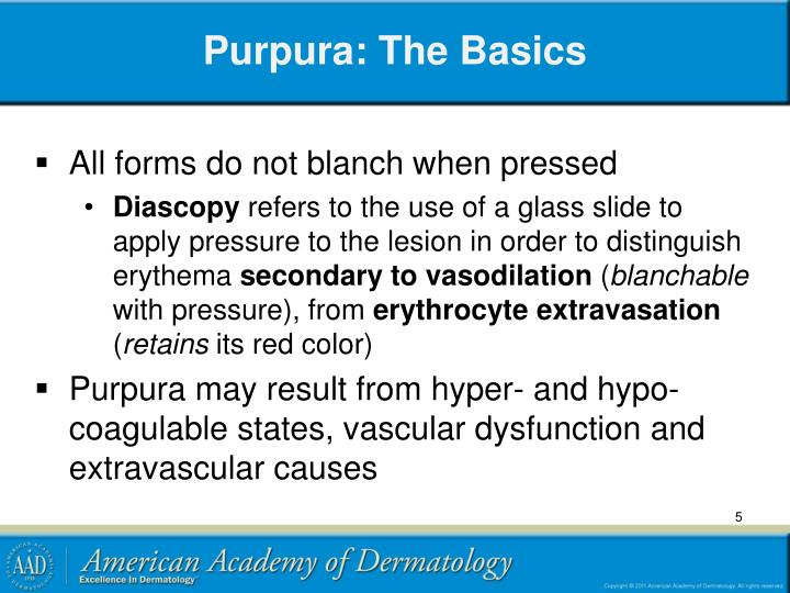 Purpura: The Basics
