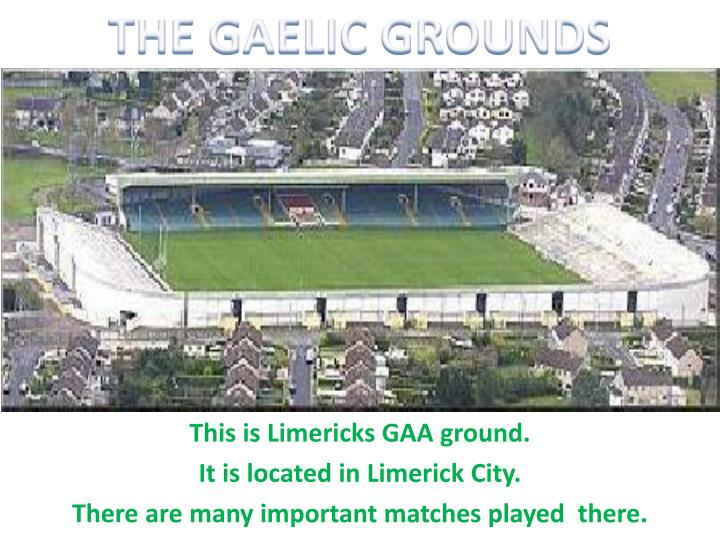 THE GAELIC GROUNDS