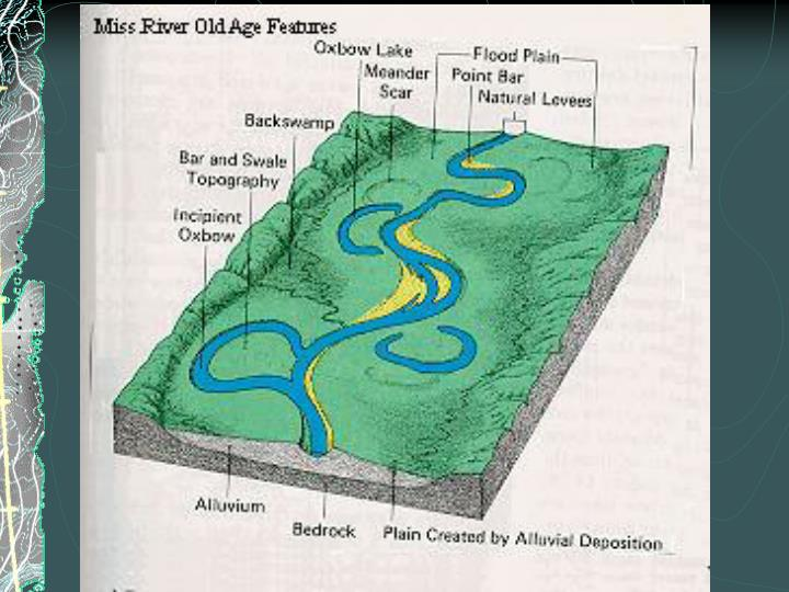 Features of a typical floodplain