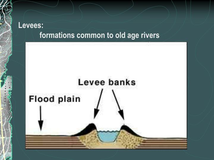 Levees: