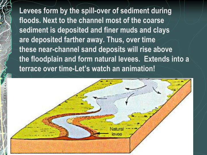 Levees form by the spill-over of sediment during
