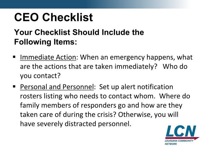 CEO Checklist