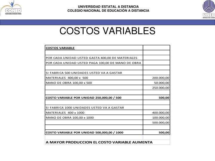 COSTOS VARIABLES