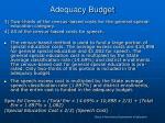 adequacy budget1